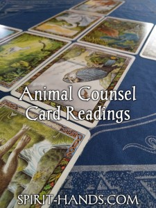 CardReadings